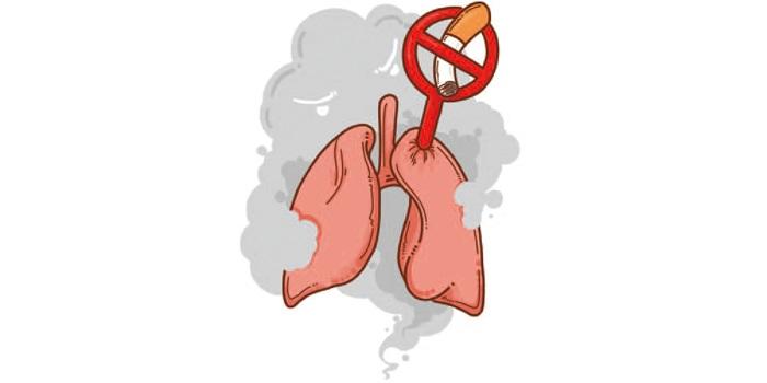 不吸烟的人为何也得肺癌 李治中, 著