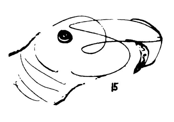 Figure-8.15-600x422.png