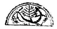树形3.png